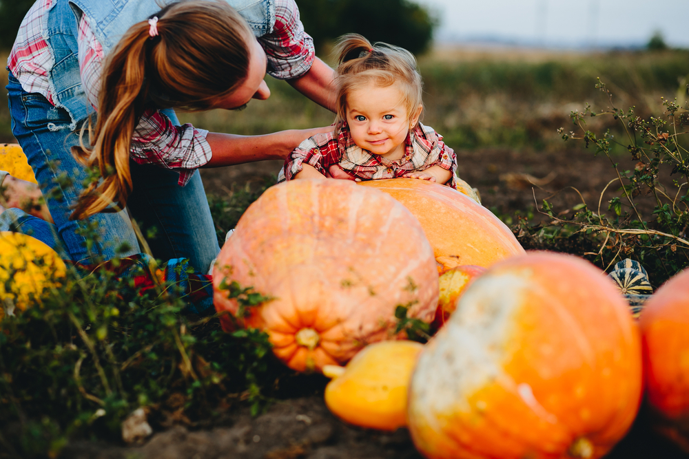 Mom and toddler in a pumpkin patch.