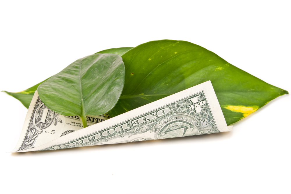 Go Green, Save Money | Image source: Shutterstock.com / Photographer: jcjgphotography